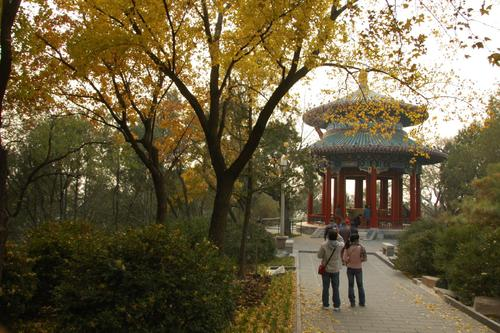 Jingshan Park in Beijing, China