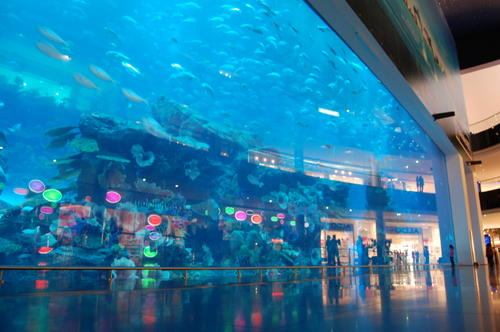 Dubai Aquarium & Underwater Zoo in Dubai, United Arab Emirates